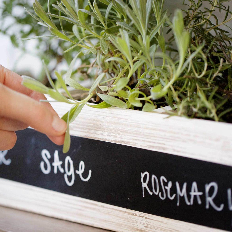 5 Ways Chalkboard Herbs 1