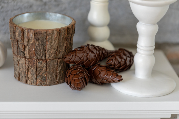 Duck-Tape-pinecone.jpeg#asset:8330