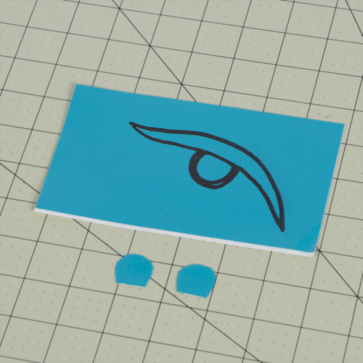 on a piece of Duck Tape, draw eyes and cut them out