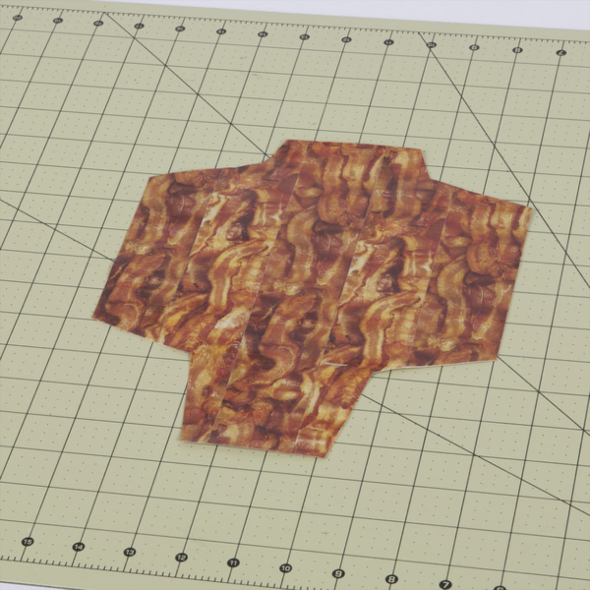 Template shape cut out from the drawing made in the previous step