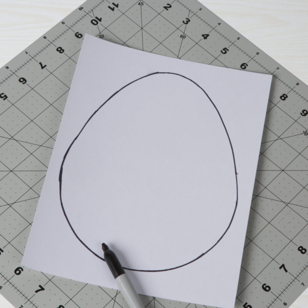 Egg shape drawn onto a piece of poster board