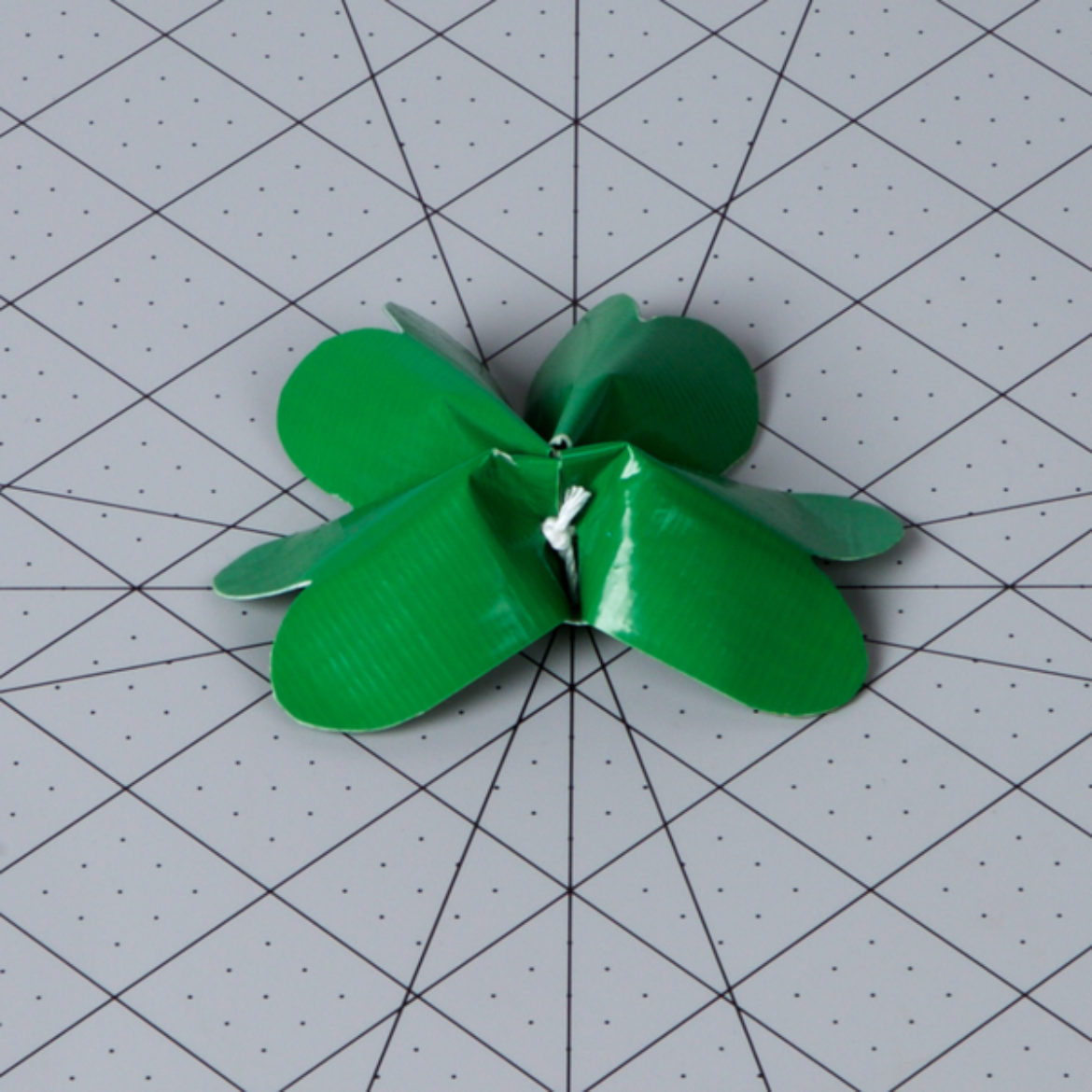 string pulled tight to scrunch the leaves together into the shape of a clover