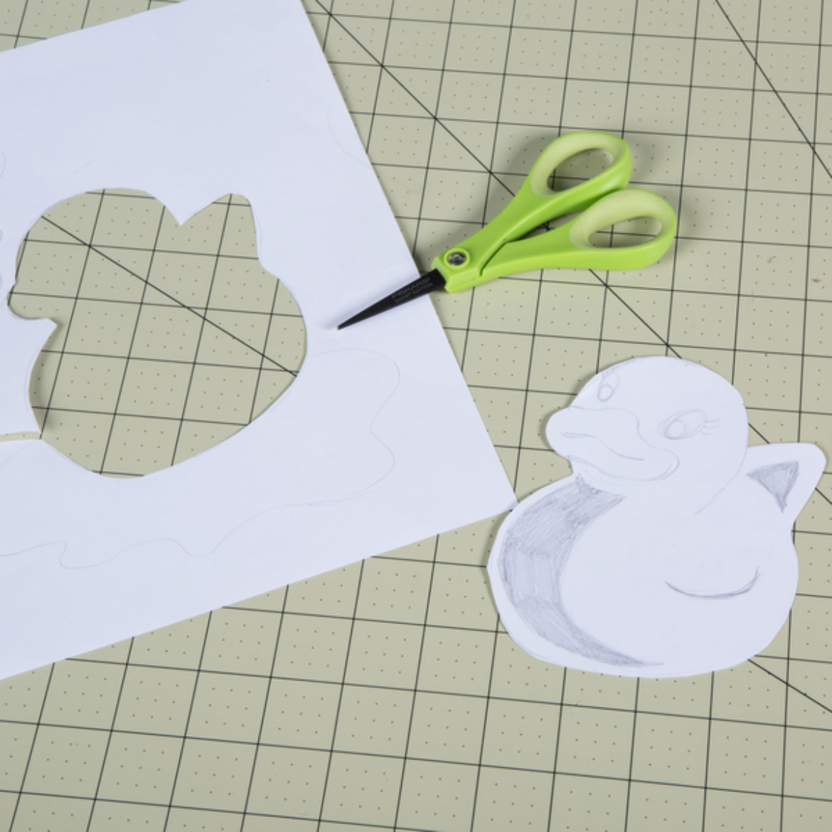Full Duck outline cut out of the picture from the first step