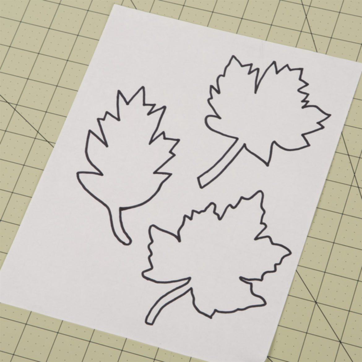leaves drawn on a sheet of cardstock to serve as a template