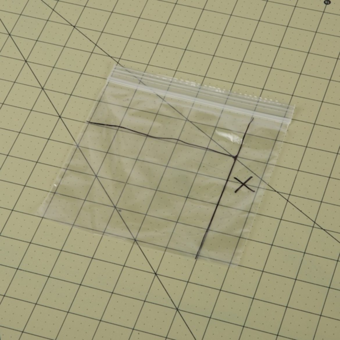 sandwich bag with three sections drawn on it
