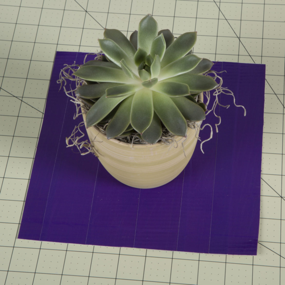 Cut a large square out of the Duck Tape sheet made in the previous steps, the potted plant is the placed in the center of the square to ensure coverage